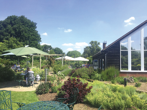 Broadview Tea Room - Hadlow | Food & Drink