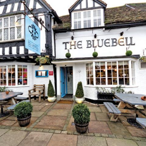The Bluebell