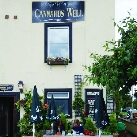 The Cannards Well
