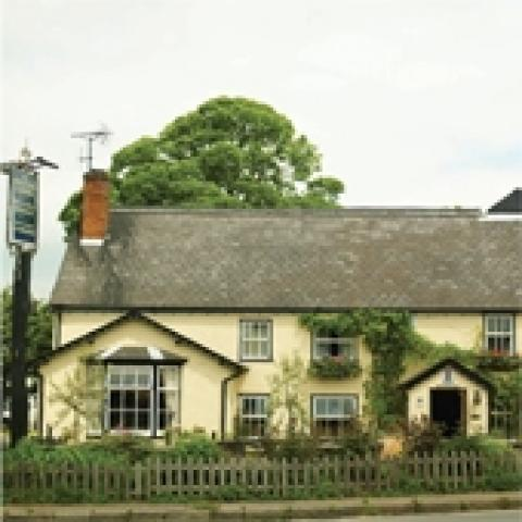 The Cricketers