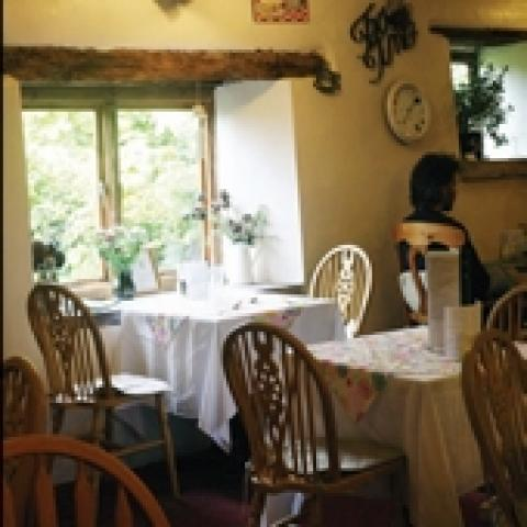 The Old Dairy Tearoom