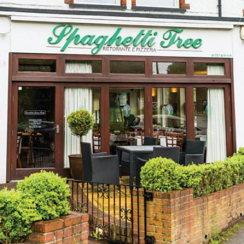 Spaghetti Tree - Tadworth